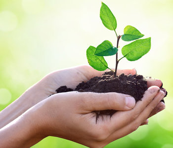 sviluppo_sostenibile_ok_copia